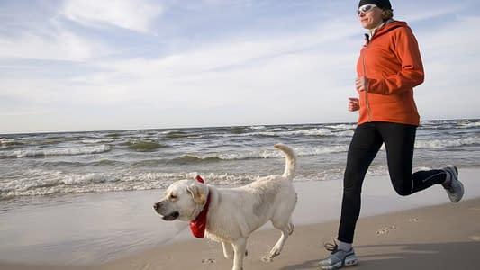 runner chasing dog running tips for beginners
