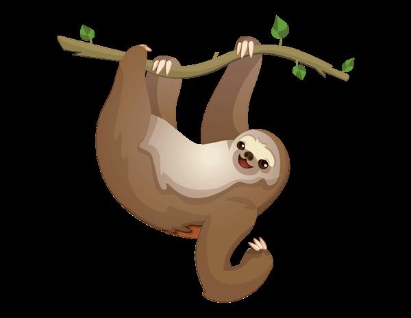sloth to flash