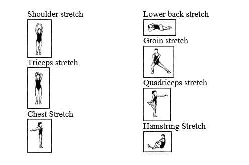 static stretches after exercise
